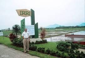 IRRI-2