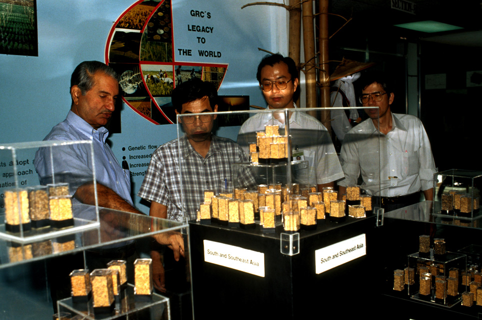 Gurdev Khush shows glass tube experiment to IRRI visitors JIRCA Director Hishino and Harumi Yakushiji; Japan International Research Center for Agricultural Science