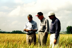 Gurdev Khush and Sant Virmani with CIMMYT Consultant Nobel laureate Dr. Norman Borlaug